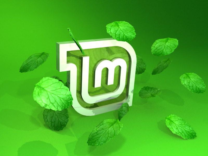 Linux Mint és una molt bona opció, tant per la seva facilitat d'ús com per la seva robustesa. Imatge de Luis Fernando Pienda Mahecha. Llicència d'ús CC BY-SA 2.0 Font: Luis Fernando Pienda Mahecha. Llicència d'ús CC BY-SA 2.0