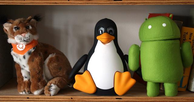 La gestió de les entitats és una bona porta al programari lliure. Imatge de Quinn Dombrowski. Llicència d'ús CC BY-SA 2.0 Font: Imatge de Quinn Dombrowski. Llicència d'ús CC BY-SA 2.0