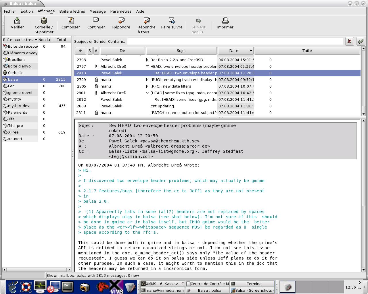 Captura de pantalla del programa de Balsa