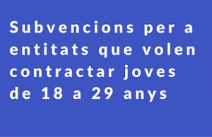 Imatge de la notícia Subvencions per a entitats que volen contractar joves de 18 a 29 anys