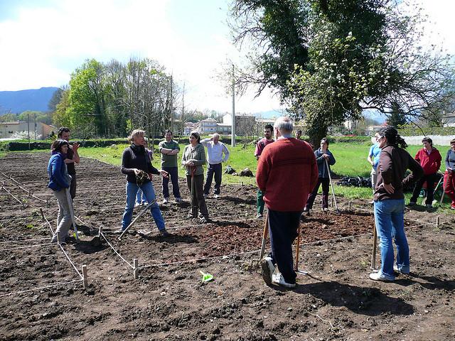 Jardineria i horticultura eines per a la millora de la - Jardineria la font ...