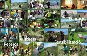 Imatge de la notícia Torna la Setmana del Voluntariat Ambiental
