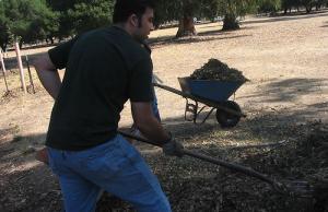 Imatge de la notícia Challenges of environmental volunteering