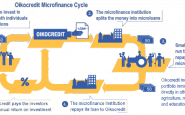Imatge Cicle Microfinances Oikocredti. Font: web Oikocredit
