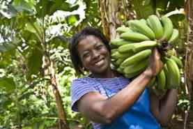 Foto: web de Fairtrade Espanya
