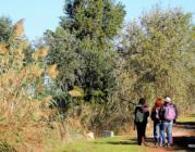 6a Marató ornitològica cooperativa al Delta del Llobregat