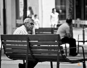 Avi al carrer, fotografia de Francisco Vargas - Haripako a Flickr