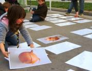 Una activitat de Minyons Escoltes i Guies de Catalunya sobre alimentació.