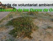 Jornada de recuperació de les Dunes de Gavà