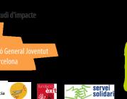 La Mentoria com a eina efectiva: presentació de resultats de l'estudi d'impacte