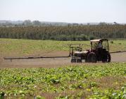 (herbicides, foto: flickr, nooraojala)