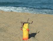 Mumo a la platja
