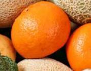 Imatge de productes ecològics. Font: Comissió Europea