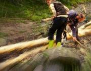 Una setmana al bosc, amb Projecte Boscos de Muntanya