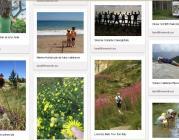 """El Pinterest de la campanya """"Connecta't amb la natura"""""""