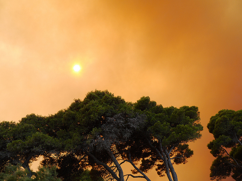 Incendi Alt Empordà 2012 (foto: flickr, garzhia)