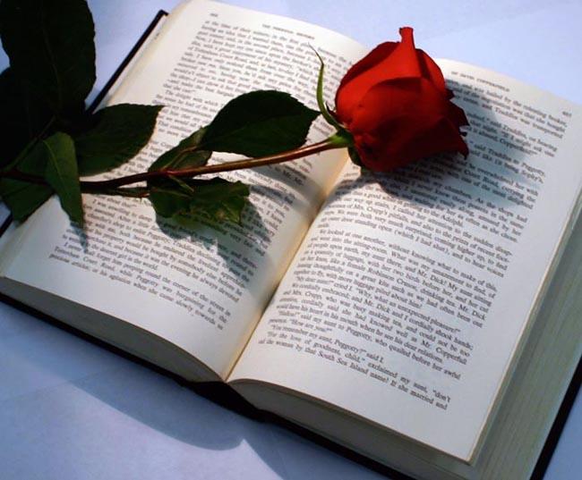 llibre_rosa_sant-jordi_11_0.jpg