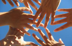 Imatge de la notícia Tramitació parlamentària del projecte de Llei de Voluntariat