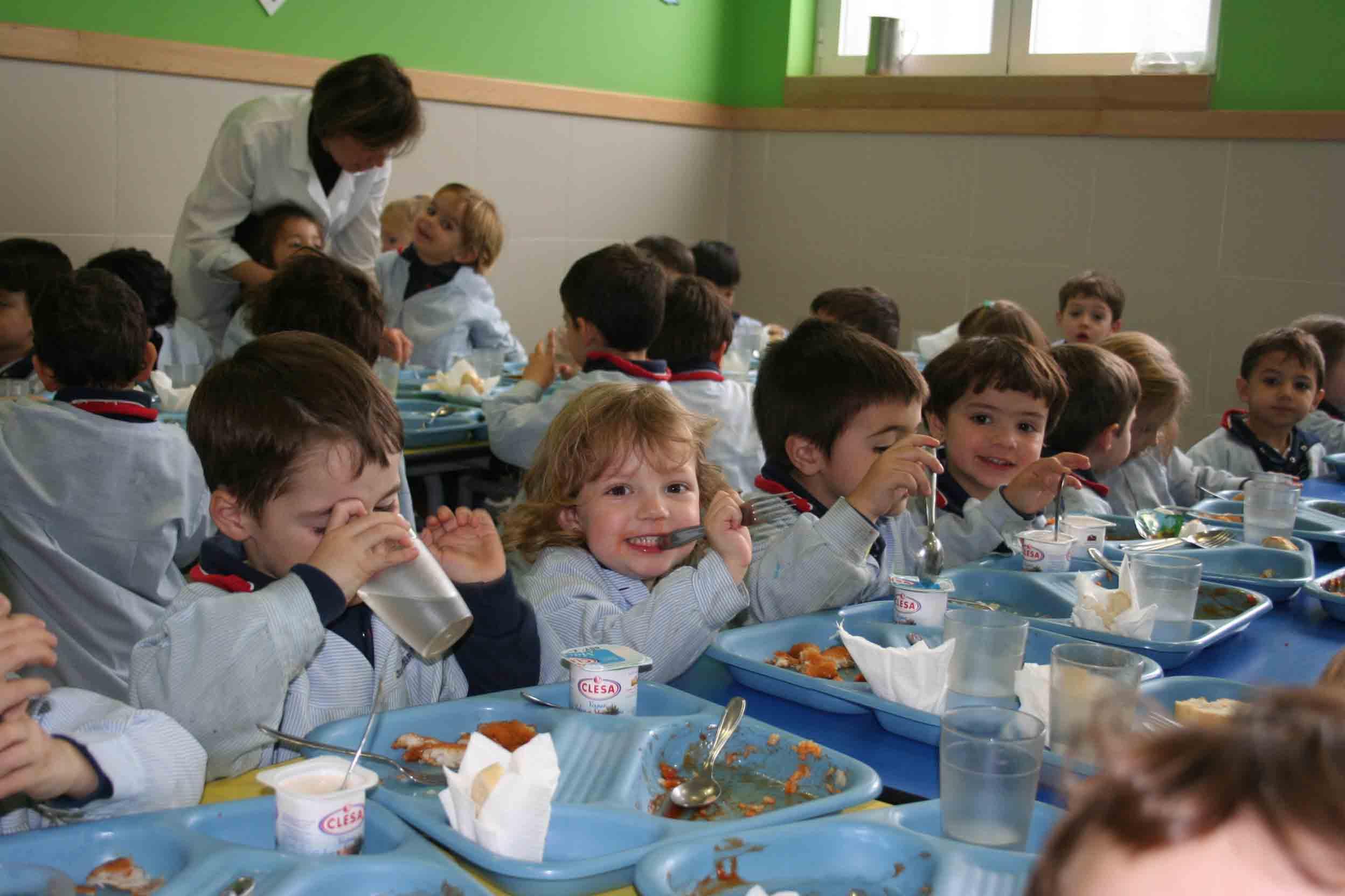 Els Serveis De Menjador Escolar Podrien Haver De Pagar Iva