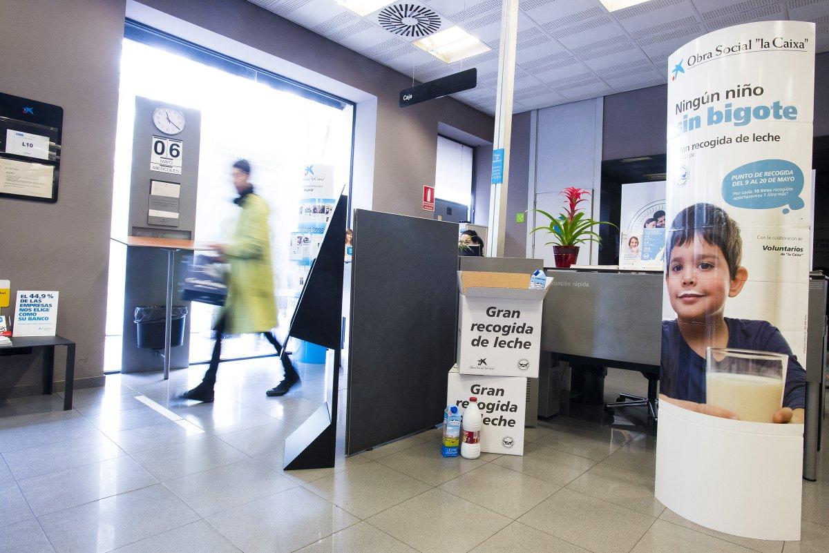 Cap nen sense bigoti la gran recollida de llet en favor for Oficina catalunya caixa