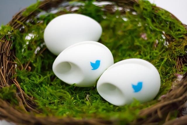 Les eines complementàries de Twitter poden ajudar-te molt. Fotografia: Garret Heath Llicència Creative Commons (CC BY 2.0) Font: