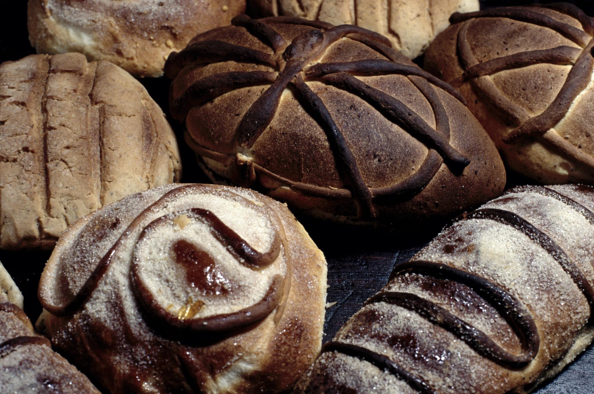 Diferents tipus de pa