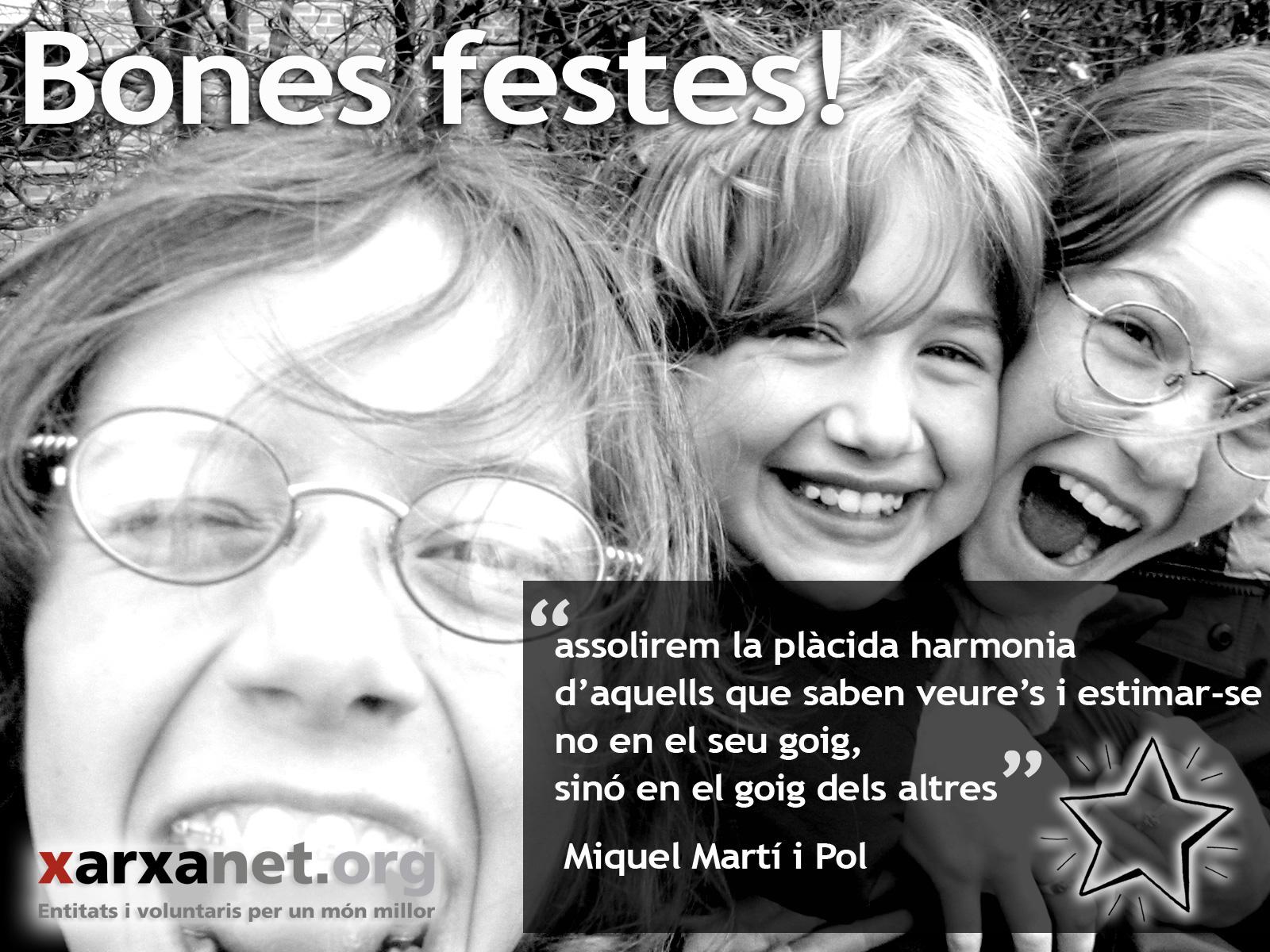 Poema Als Voluntaris De Miquel Martí I Pol