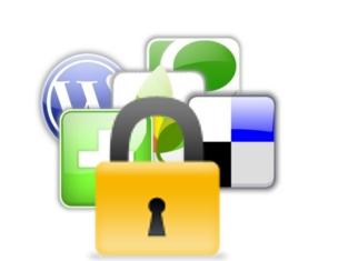 Seguretat en la web 2.0