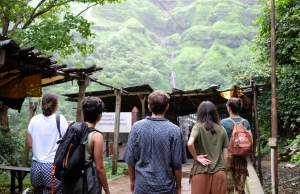 Quatre persones voluntàries observen la natura en un Camp de Solidaritat a la Índia. Font: SETEM