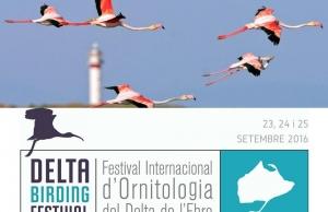 Imatge de la notícia El Delta Birding Festival ja té dates i busca voluntaris i voluntàries
