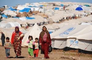 Imatge de la notícia Refugiats al món 2016