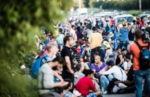 Imatge de la notícia L'Anuari dels Valors recull la crisi de les persones refugiades