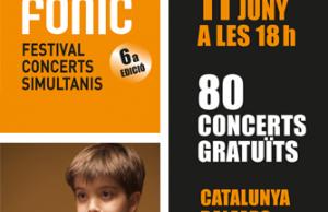 Imatge de la notícia Participa en l'organització del Festival SIMFÒNIC!