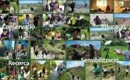 Setmana del Voluntariat Ambiental 2015