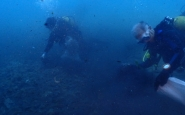 Submarinistes de Vanas Dive en una neteja del fons marí a Barcelona Font: Vanas Dive