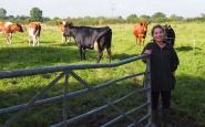 Clara Blasco va ser voluntària en una granja ecològica anglesa Font: Clara Blasco