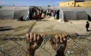 Mans a una tanca d'un camp de refugiats. Font: Diario Octubre
