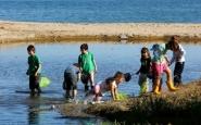 Els petits naturalistes de l'Escola de Natura del GEPEC (Imatge:Gepec)