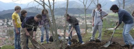 Ajuts a entitats sense ànim de lucre del tercer sector ambiental de Catalunya afectades econòmicament per la COVID-19