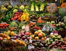Des de l'inici de la crisi sanitària, l'oenagé ha repartit menjar per a 160.000 persones cada mes. Font: Unsplash. Font: Font: Unsplash.