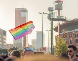 L'Observatori contra l'Homofòbia ha registrat 189 incidències per LGTBI-fòbia, la xifra més elevada dels últims cinc anys. Font: Pixabay