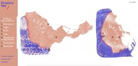 Imatge de la portada de l'informe audiovisual