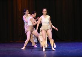 IX Festival solidari Dansem