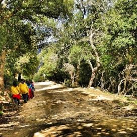 Nens i nenes de l'AEiG Pinya de Rosa de Blanes durant uns campaments. Foto: MEG