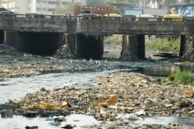 Contaminació de l'aigua a l'Índia. Font: Wikipedia