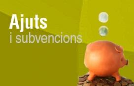 Font: Web Ajuntament de Sant Quirze del Vallés