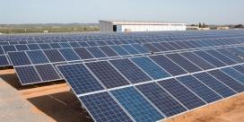Planta fotovoltaica de la cooperativa a Alcolea del Río. Font: Som Energia