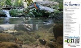 Pòster de la biodiversitat del riu Glorieta a les Muntanyes de Prades (imatge; assoc-cen.org)