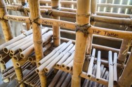 Bambú, material amb el que es fabriquen les bicicletes. Flickr: jbdodane, Flickr
