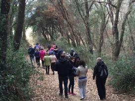 L'itinerari pel bosc de Santiga marca l'inici de l'educació ambiental a Catalunya